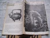 Natur  und  Volk【德文原版 1935年动物插图 书皮与内页不符】