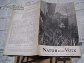 Natur  und  Volk【德文原版1936年动物插图】