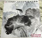 手绘真迹国画:梅州青年画家 天鸿(白莲解禅意,新荷弄晚凉)荷花