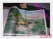 中生代(一)(二)(三)晚三迭世兽齿类的生态景观  .晚侏罗世始祖鸟的生态景观 恐龙的生态景观