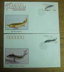 1994-3鲟特种邮票极限封一套四枚