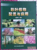 彩叶植物配置与应用