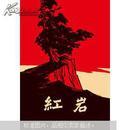 红岩正版畅销小说书籍 青少年革命爱国主义教科书