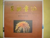 金秋重阳摄影艺术作品集(全铜版印刷)