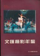 '96文汇摄影年鉴