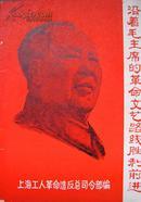 沿着毛主席的革命文艺路线胜利前进   上海工人革命造反总司令部1967年5月版 封二有江青宣传画