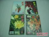 花卉2000年2,3,4,6期4册【060】