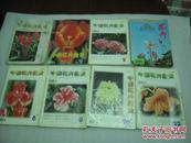中国花卉盆景(1999年1,2,3,4,5,8,9,10,12期)9册【060】
