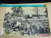 ★大东亚战争报道写真录之《日军在缅甸战场与中国远征军和英军交战照片》1942年发行!尺寸为20:15cm!1942年3月摄制!背面贴详细说明单独页/品优!
