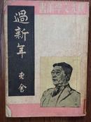 过新年(晨光文学丛书)