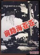 前路海苍苍 (中国首部新写实主义商务小说)
