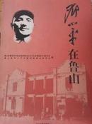 邓小平在鲁山