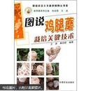 食用菌鸡腿菇栽培技术大全/鸡腿蘑种植技术/病虫害防治1光盘1书籍
