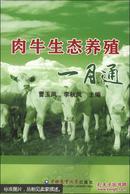 肉牛养殖技术书籍 肉牛生态养殖一月通