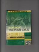 钢铁是怎样练成的:世界文学名著书林