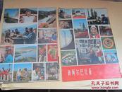新阿尔巴尼亚(1973.1)画报