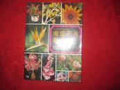 160种花卉彩色图鑑-----家庭花卉栽培【港版】