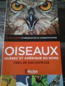 oiseaux quebec et amerique du nord 法语