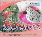 火龙果种植技术资料大全,火龙果怎么种植