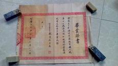 1954年毕业证书【陈留县第四区罗王村小学】