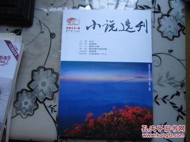 当代  长篇小说选刊2015年第6期            D1