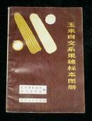 玉米自交系果穗标本图册
