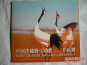 中国珍稀野生动物——丹顶鹤