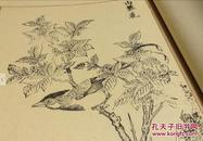 元明花鸟画典     1函2册全  木版画谱   艺草堂