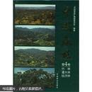 中国森林(第4卷)