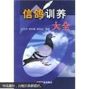 信鸽饲养与训练图书 赛鸽养殖技术书籍 信鸽训养大全