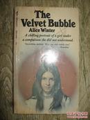 the velvet bubble
