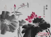 河北省美术家协会会员释宏德《清趣》