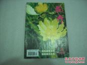 花卉2008年4,5期2册【060】