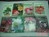 中国花卉盆景(2000年1,3,4,5,6,7,8,9,10,11,12期),11册【060】