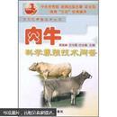 肉牛养殖技术书籍 肉牛科学养殖技术问答