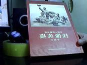 中国人民解放军挂像英雄专题片 【有8张光盘】