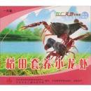 养小龙虾书  小龙虾稻田综合养殖技术 VCD稻田套养小龙虾1光盘1书