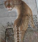 国画——老虎
