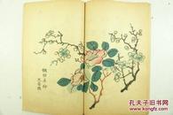 《十竹斋书画谱》 16册全 1936  印刷精美