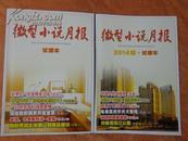 微型小说月报——(2013年、2014年试读本)2本合售