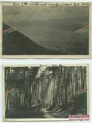 民国1923年香港维多利亚港鸟瞰全景,林间小道等老照片两张,拍摄于1923年5月27日