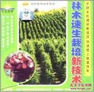 林木的培育和种植技术,速生林种植技术大全