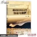 西汉彩绘兵马俑修复与保护