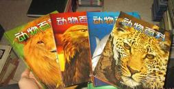 动物百科彩图版 全4册