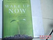 英文原版Wake Up Now: A Guide to the Journey of Spiritual Awakening/