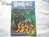 农村新技术  月刊   国内发行  1991年第9期 总87期  孔网唯一
