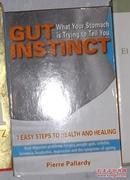 英文原版 Gut Instinct by Pierre Pallardy 著