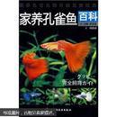 孔雀鱼养殖书籍 家养孔雀鱼百科 孔雀鱼的饲养技术 VCD 1光盘+1书