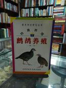 特禽养殖鹧鸪养殖