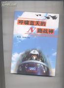 呼啸蓝天的N路战神(一本飞行和空战的好书)